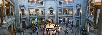 Natural History Museum, Washington D.C.