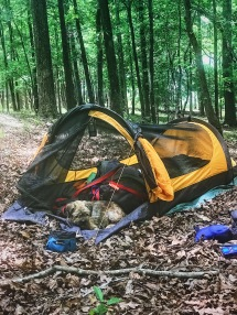 Campsite - Sumter National Forest Whitmire, S.C.
